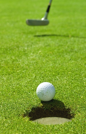 Citrus County Florida Golf